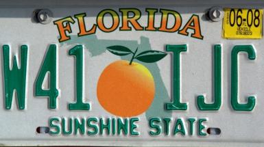 Florida - Petra de Groot