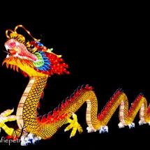 Chinees LF 2 © fotografiepetra