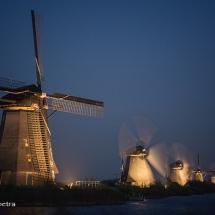 Kinderdijk 1 © fotografiepetra