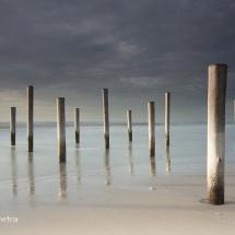 Palen op het strand van Petten 1 © fotografiepetra