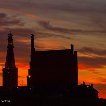 Tegenlicht 1 © fotografiepetra