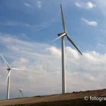 Windmolens Maasvlakte Rotterdam © fotografiepetra