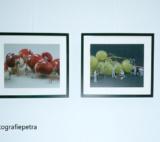 Huisarts Daalmeer 4 © Fotografiepetra
