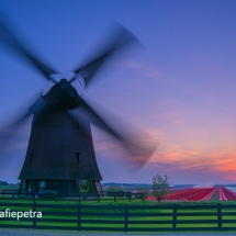 Schermermolen aan de dijk & bollenveld © fotografiepetra
