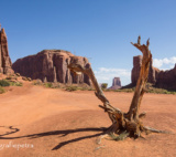 6 Monument Valley © Fotografiepetra