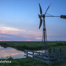 Amerikaans windmolentje in Groet © FotografiePetra