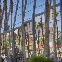 Las Vegas Ramen © FotografiePetra